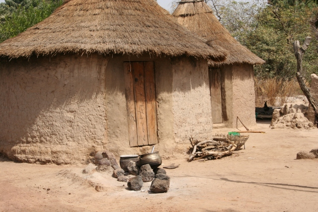 a. Mali Living Conditions (002)