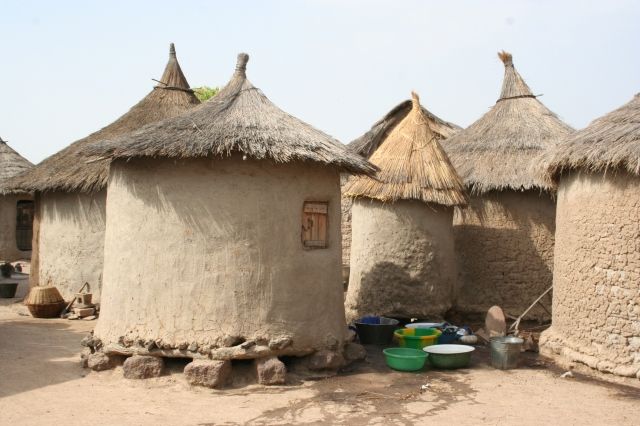 a. Mali Living Conditions (008)