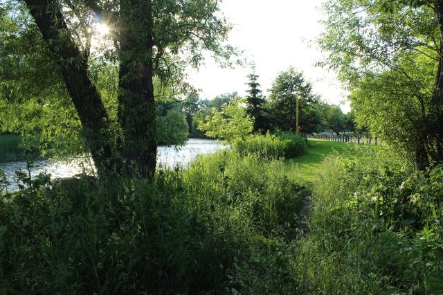 Theodore Turley's land
