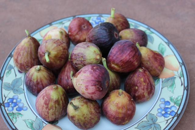 Figs plate