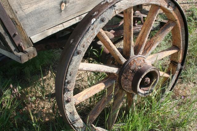 Pioneer Trek July 2008 032