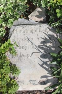 Lewis, Ann John Headstone (1)
