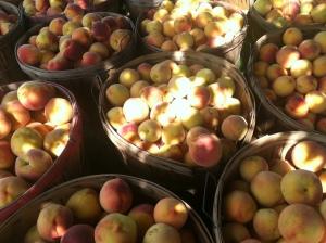 Peach bushels