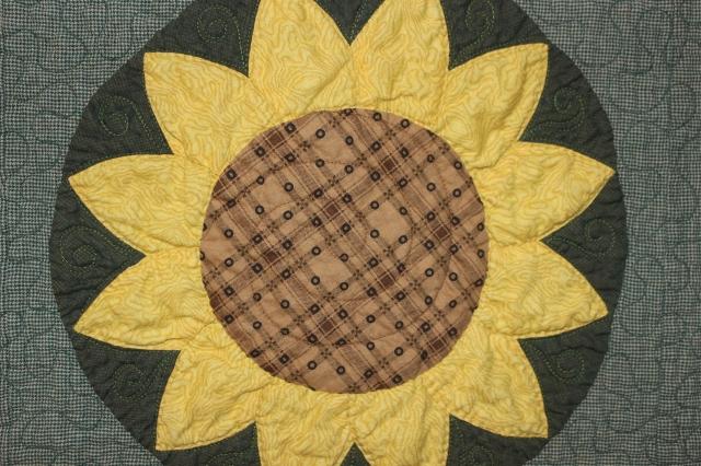 Sun Flowers (8)