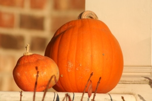 Fall, Lewis Yard (2)