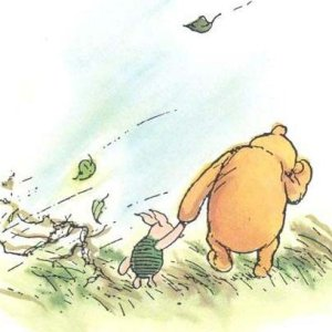 Pooh Bear, Wind