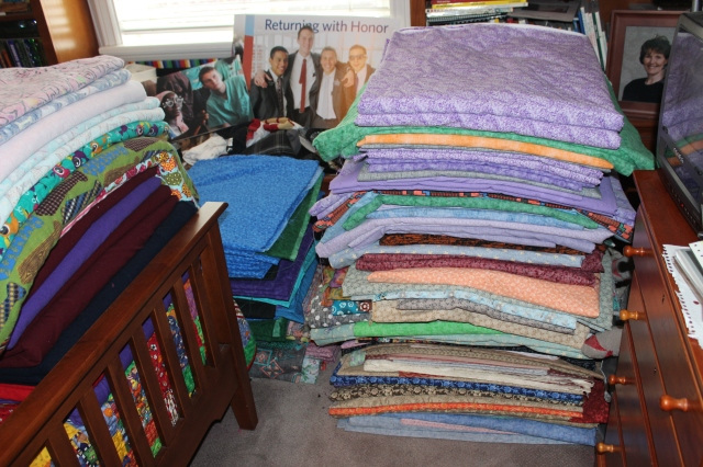 2015-6-10 Adam's room fabric (6)