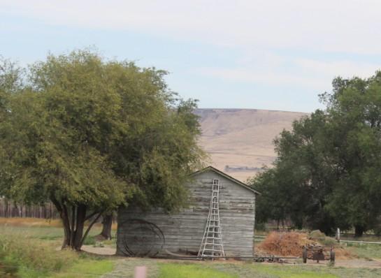 2015-9-17 Moxee Farm