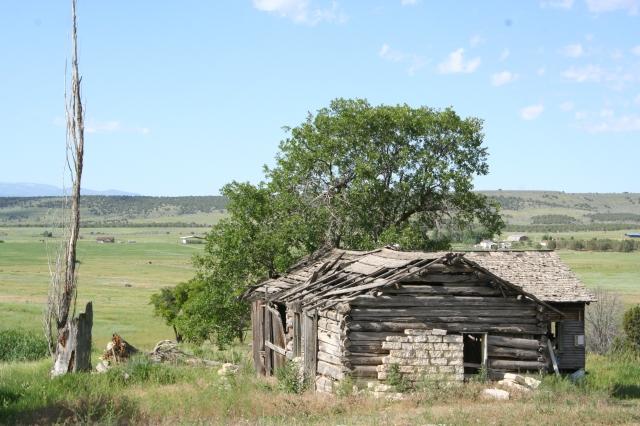 Fairview, Bushman homestead, July 2010 (46)
