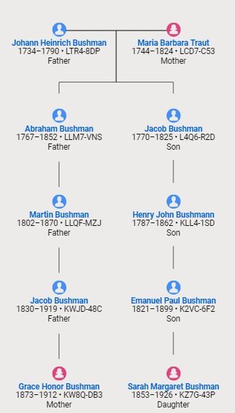 Bushman, Sadie relationship chart